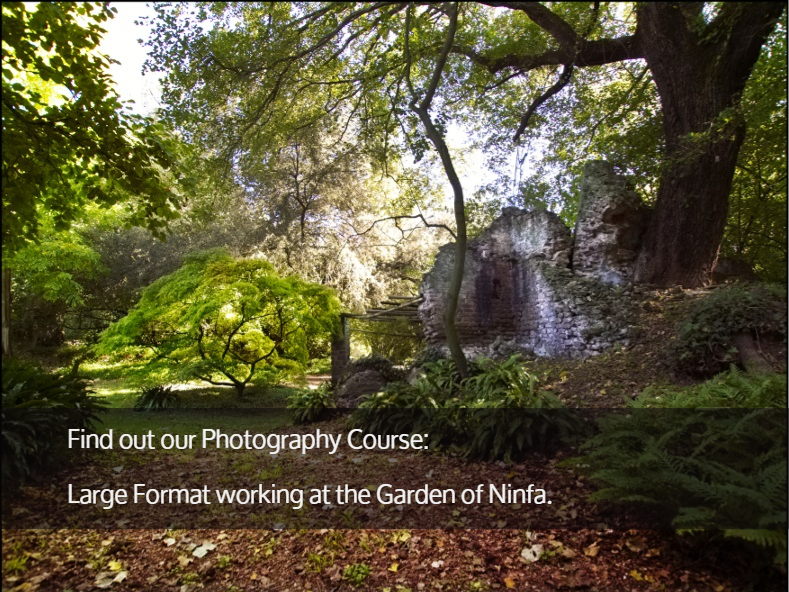 photography-course-ninfa